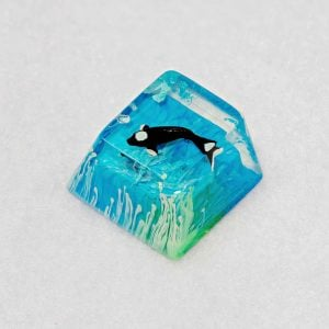 20180730 – Jelly Key – Product – Jelly Zen Pond – Stock 0013 (Copy)