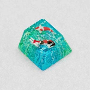 20180730 – Jelly Key – Product – Jelly Zen Pond – Stock 0034 (Copy)