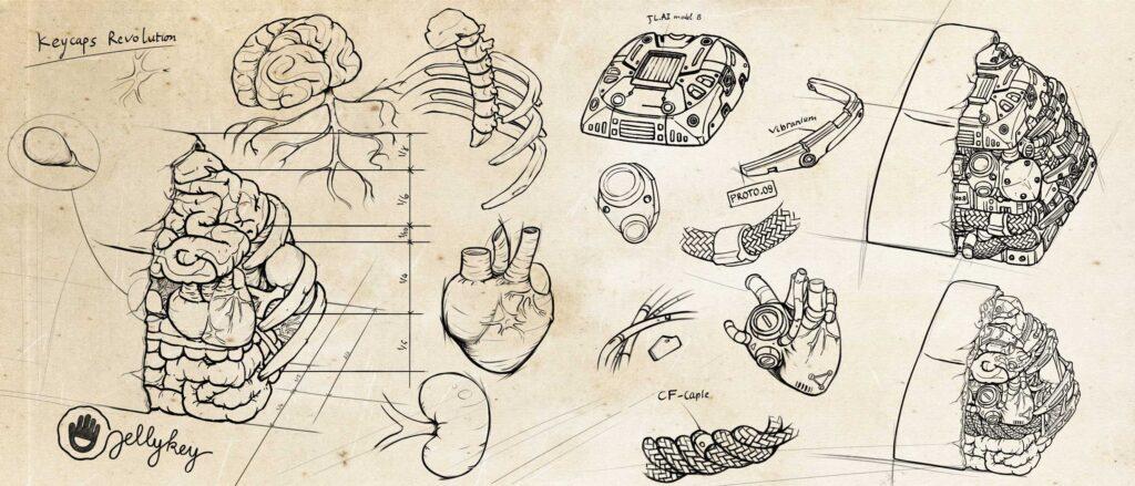 anatomy custom keycaps 005